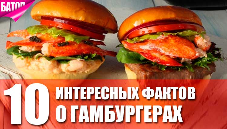 факты о гамбургерах