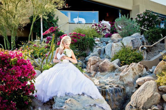 wedding in Scottsdale, Arizona