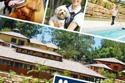 Pet Resort Australia