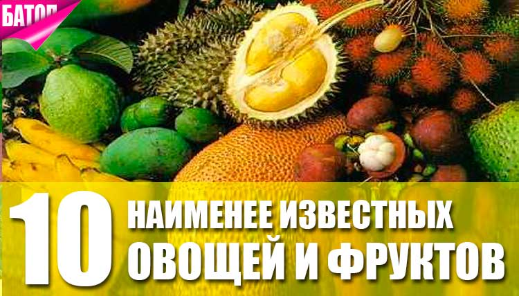 самые малоизвестные овощи и фрукты