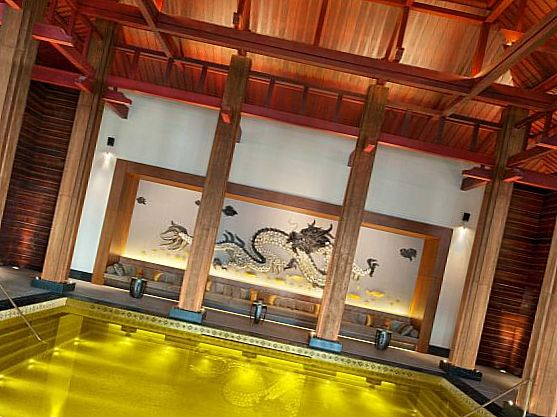 Бассейн St. Regis Gold Energy Pool