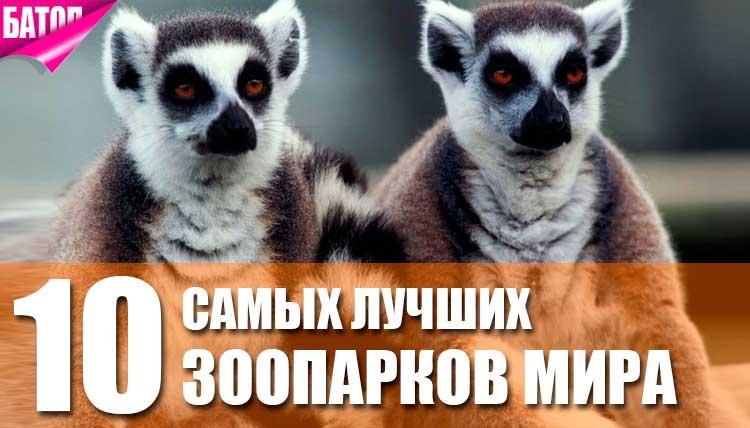 Самые лучшие зоопарки мира