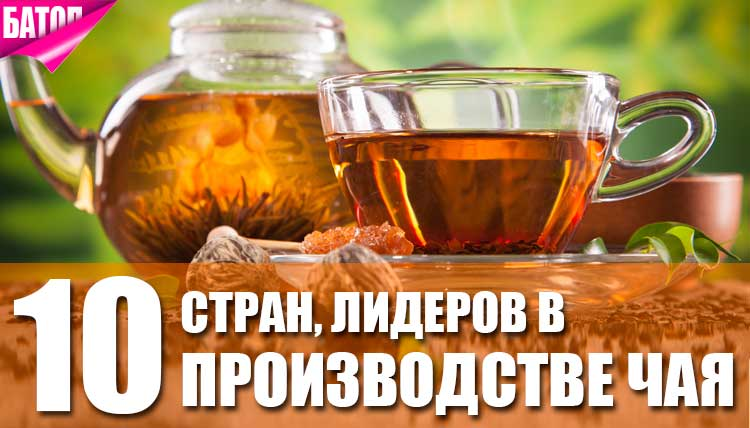 Лидирующие в производстве чая страны