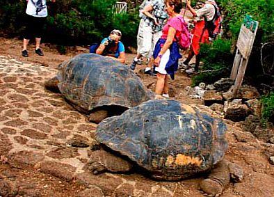Национальный Парк Галапагосских островов