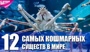 Самые кошмарные существа мира