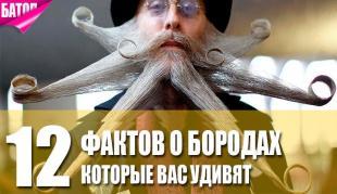 факт о бородах