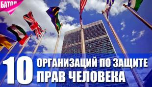 Организации по защите прав человека