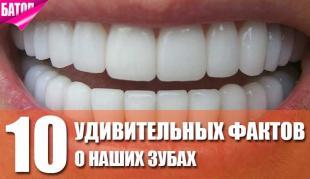 удивительные факты о наших зубах
