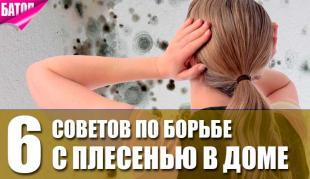 советы по борьбе с плесенью в доме